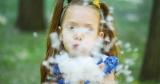 Аллергия на тополиный пух: симптомы и лечение